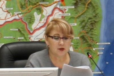 Депутаты комитета по бюджету, налогам и экономическому развитию обсудили итоги выполнения рекомендаций депутатских слушаний